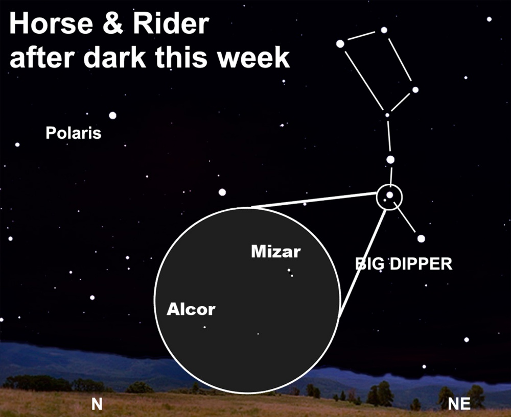 Find the horse and rider after dark this week.