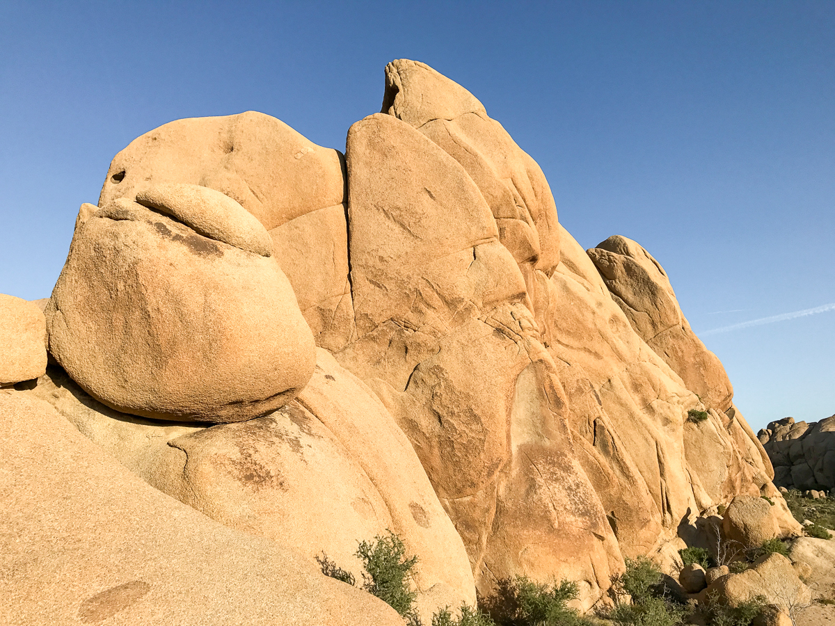 Evening light on the Split Rock Loop Trail emphasizes the beuaty of the Jumbo Rocks area in Joshua Tree National Park.