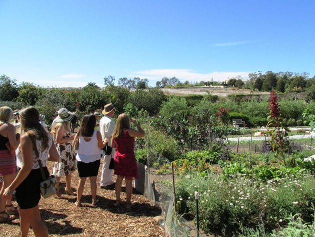 Table of Life Gala guests view the food garden before their lunch.