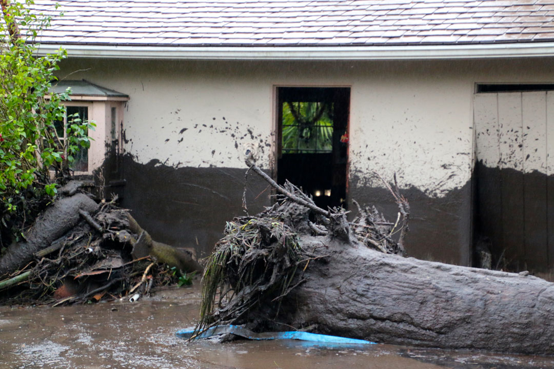 A downed tree lays near a damaged home on the 100 block of Olive Mill Road in Montecito.
