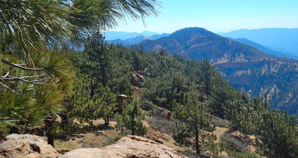 Dan McCaslin: Reyes Peak and the Reyes Peak Trail Offer a