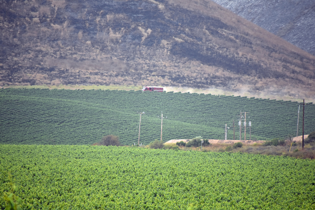 A fire truck travels down a road above some vineyards off Santa Maria Mesa Road on Monday afternoon where fire scarred hills from the Alamo Fire can been seen. Nearby, another hill smoldered.