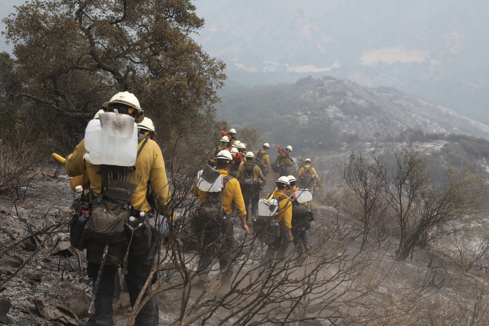 Hand crews head down to cut a 10-foot-wide line in the brush during the Alamo Fire response Monday.