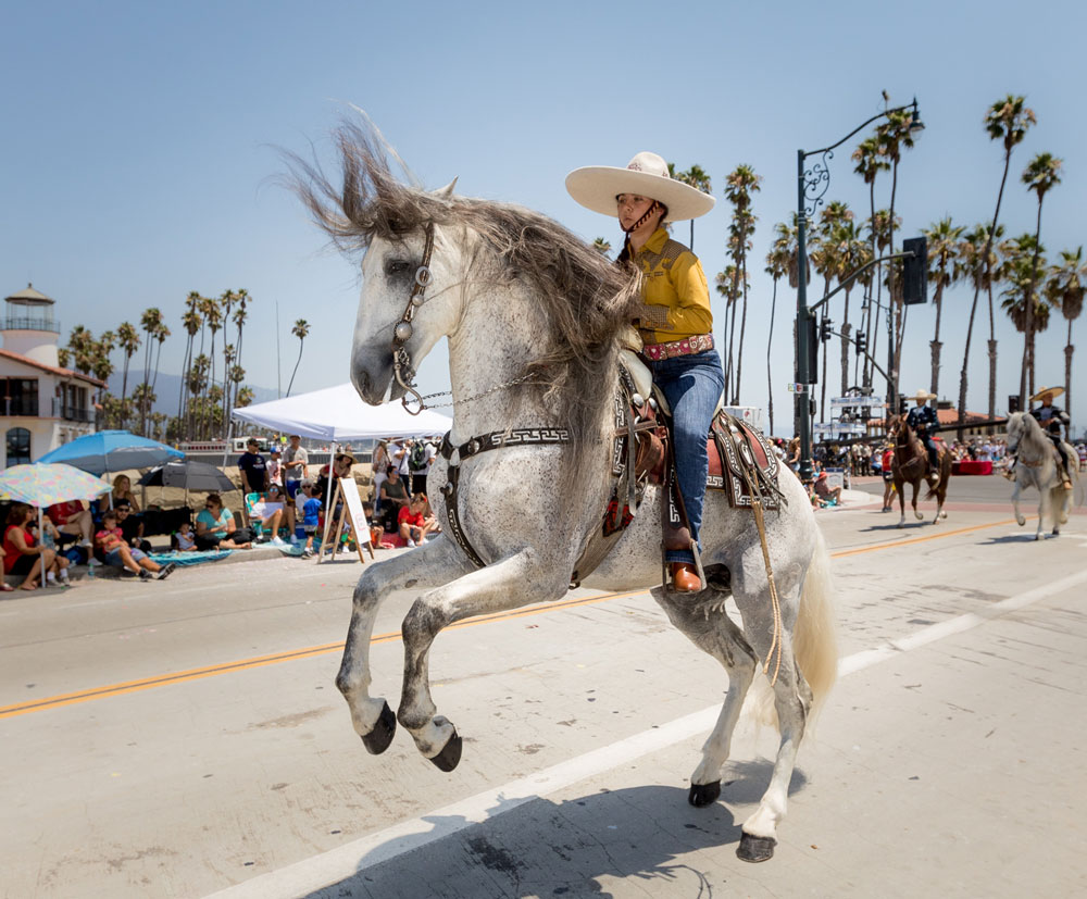 A rider and horse entertain the crowd during the annual Fiesta historical parade in Santa Barbara on Friday.