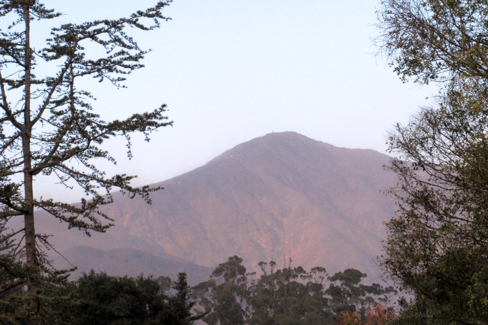 By midafternoon Saturday, the wind had cleared away the smoke from Montecito Peak, revealing a now-barren face.