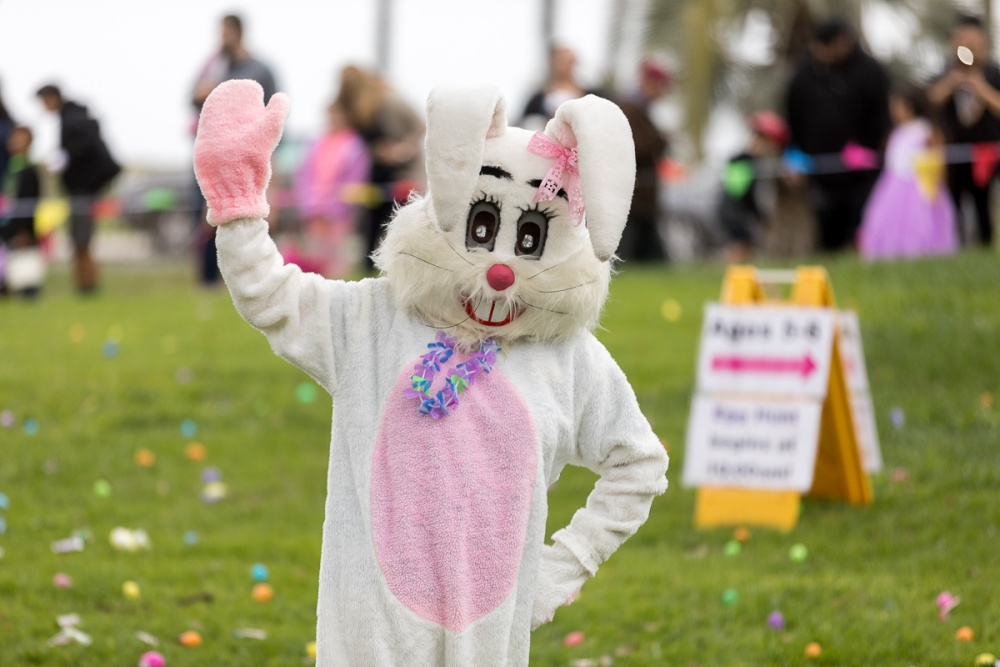 Person wearing an Easter bunny suit waves.