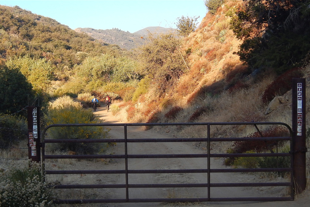Cyclists head to Big Pine-Buckhorn Road in the Cuyama backcountry via Santa Barbara Canyon Road.